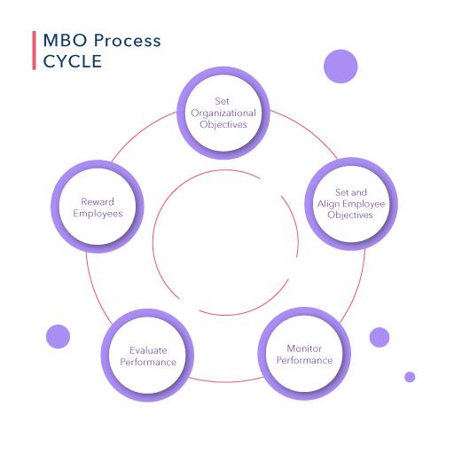 MBO-PROCESS-1