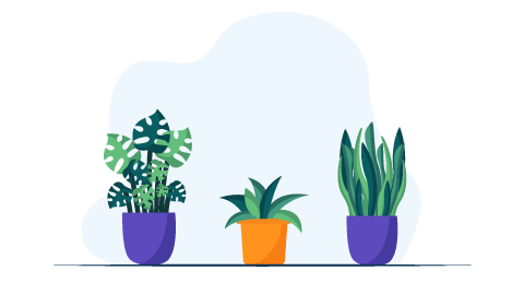 Work_from_home_setup_Plants