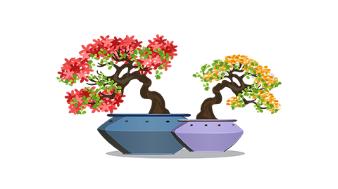 corporate-diwali-gifts-for-employees-bonsai-plant