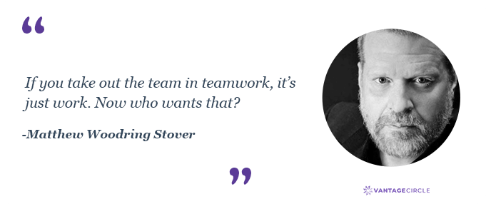 Teamwork quotes by Matthew Woodring Stover