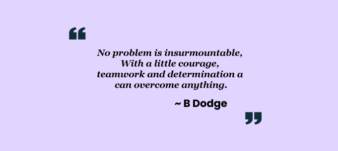 Teamwork quotes by B.Dodge