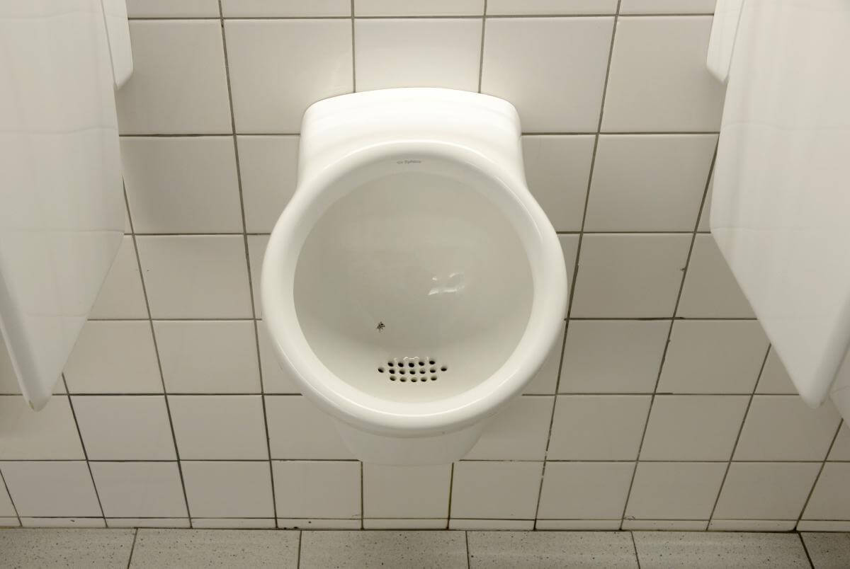Fly in the urinal is an example of Nudge theory