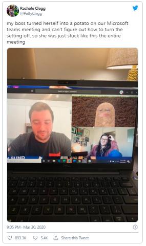 challenges-during-Virtual-Meetings-twitter
